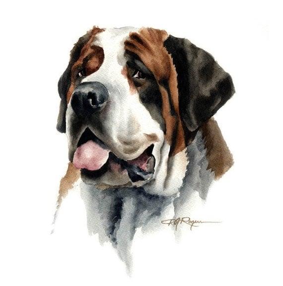 Saint Bernard Art Print Dog Painting By Watercolor Artist Dj