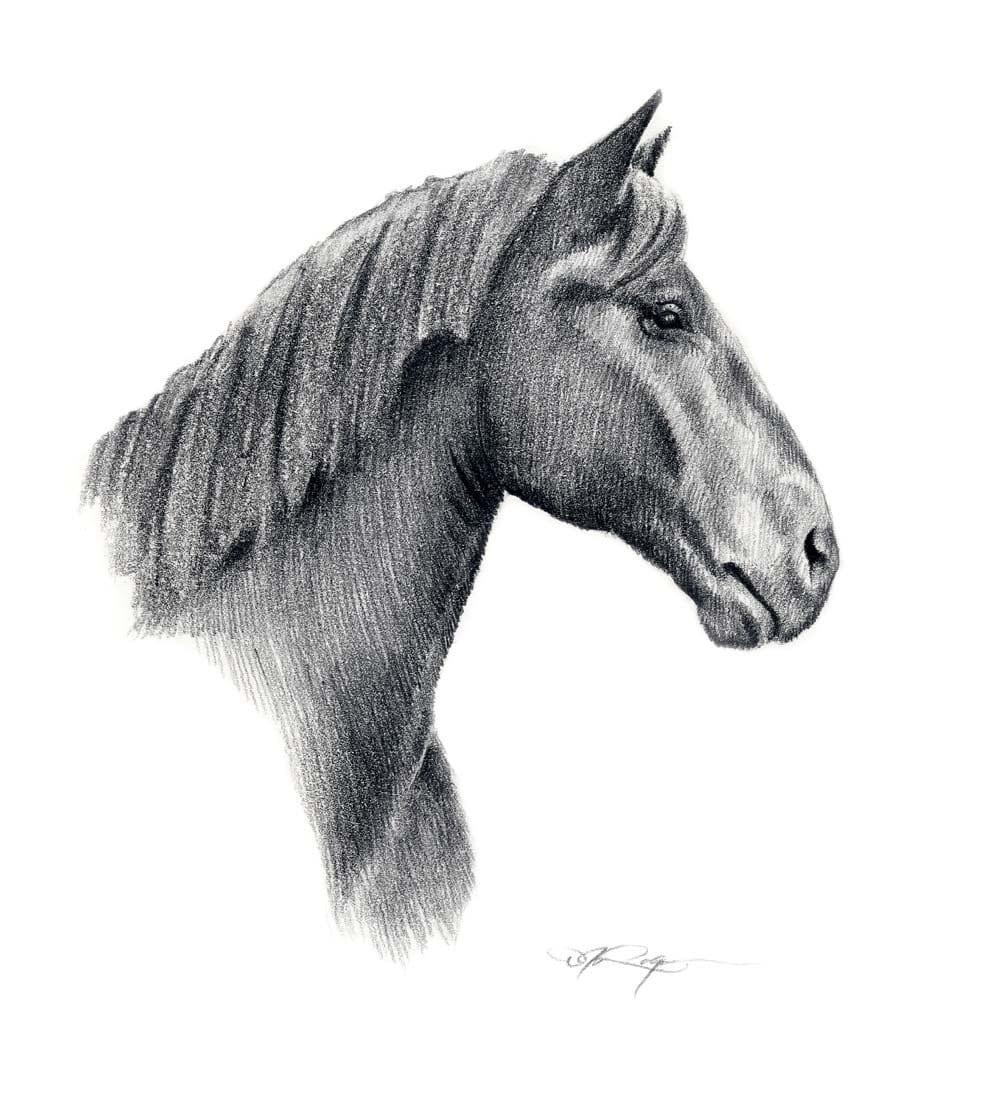 Drawings of horses heads easy