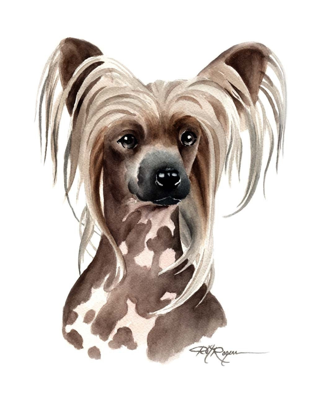 Chinese crested dog art print signed by artist dj rogers for Dog painting artist