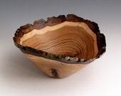Small Bark Edge Butternut Wood Turned Bowl