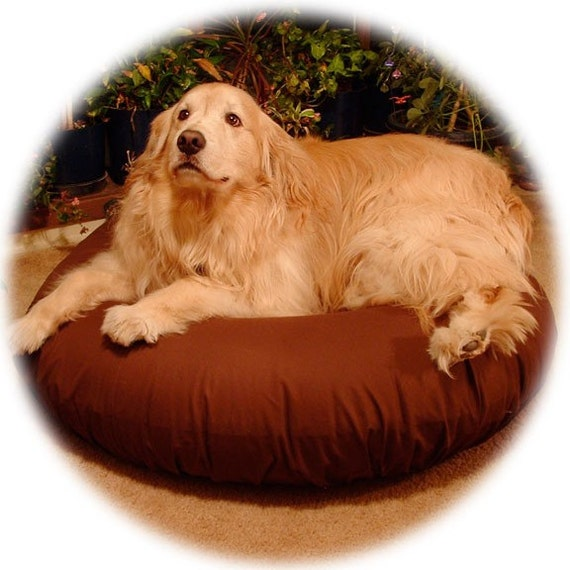 100 Lbs Plus BIG DOG 46in Air Bed Tough Canvas-w-Chocolate