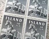 Icelandic ponies - vintage postage - Iceland - postage stamp ephemera