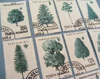 Romanian trees stamp set - postage stamp ephemera
