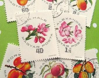 Peach apricot stamp set - Hungary stone fruit and blossoms postage stamp ephemera