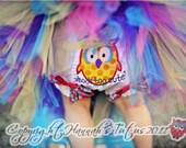 CUSTOM Winnie HOOTs TUTU  1st 2nd 3rd 4th Birthday Great for Photo Shoot Prop tutu is custom made to order