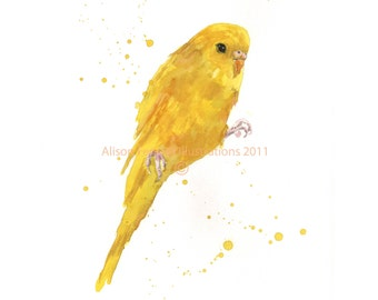 Yellow PARAKEET Watercolor Print, bird lover gift, parakeet art, budgie art