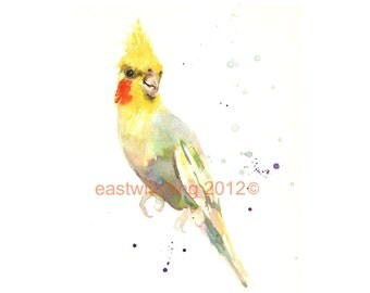 Cockatiel Watercolor Print, cockatiel, bird print, cockatiel lover