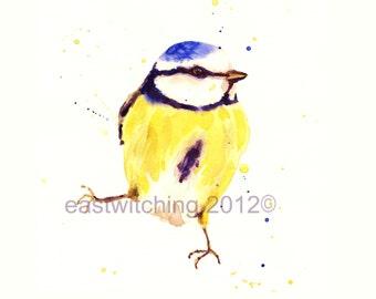 Bird Art, BLUE TIT painting, bird lover gift, 8x10 print, Blue Tit Watercolor Print