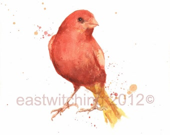CANARY Print, canary painting, bird art prints