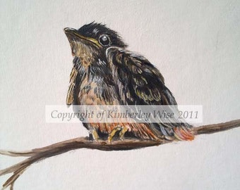 Signed limited Edition Print - Fledgling