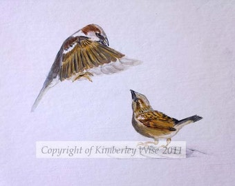 Signed limited Edition Print - Sparrows