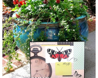 Butterfly and Watch Canvas