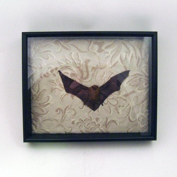 LOVED TO DEATH Gothic Victorian Genuine Taxidermy Fruit Bat Memento Mori Shadow Box Diorama Cream Damask