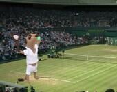 Meerkat tennis player, knitted plush, handknit in UK, us open, wimbledon