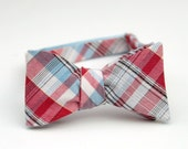 red and blue plaid freestyle bow tie