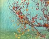 Autumn - 6 x 6 inch giclee print