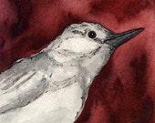 Vireo Bird - original petite painting - 4 X 4 inches
