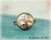 Glass Photo Ring -Owl On A Skateboard- Wearable Art-  Bronze Adjustable Ring - Buy 2 Get 1 Free