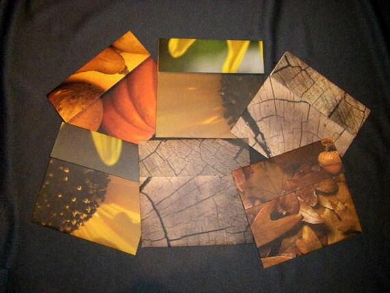Six Autumn Snapshot Envelopes Pouches SALE
