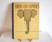 Birds and Animals - Rare Antique Print Collection 1897