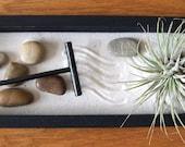 Tillandsia - SALE - 3 dollars off - Zen Garden with Tillandsia