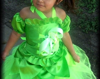 Tinkerbell Corset and Tutu Dress szies 12 18 months 2t 3t 4t 5t