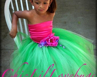 Custom Corset and Tutu Portrait SET  5T for jillargiris only