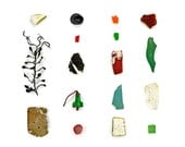 Beachcombing series (No.21) - 8 x 8 photograph - seaweed, sea glass, flotsam