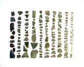 Seaglass Spectrum: Olive Green - 8 x 10 beachcombing photograph