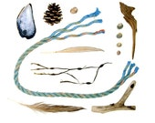 Beachcombing series No.47 - 12 x 12 photograph - driftwood, feather, seaweed, shells