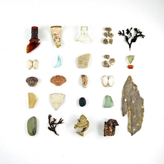 Beachcombing series (No.8)  - 8 x 8 photograph