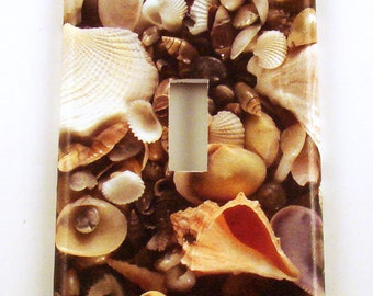 Light Switch Cover Switchplate  in SeaShell (248S)