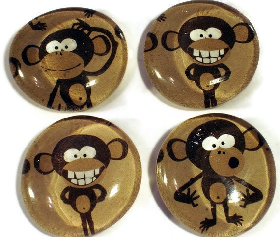 Funky Refrigerator Magnets  Glass Marble Magnets  in   Crazy Monkey  (M56)