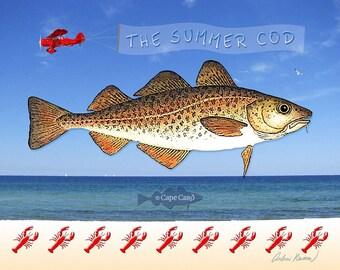 The Summer Cod (10x8 print)