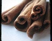 Spice Series - Cinnamon
