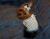 LITTLE SWEETIE  Dog Shrug Sweater Crochet Pattern