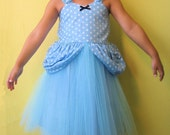 CINDERELLA  costume Princess TUTU dress from Lover Dovers handmade girls costume great for Holiday trip