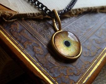 Iris Charm -- Wolf / Large -- Brass Eye Pendant