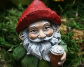 Beer Drinking Gnome - Garden Gnomes For Sale - Funny Naughty Gnomes with Beer Mug