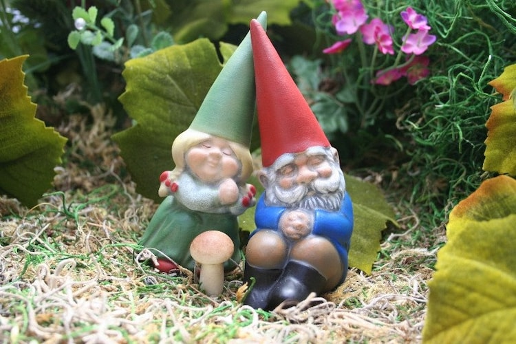 Mr And Mrs Rude Questions: Miniature Garden Gnomes In Love Mr & Mrs Gnome By PhenomeGNOME