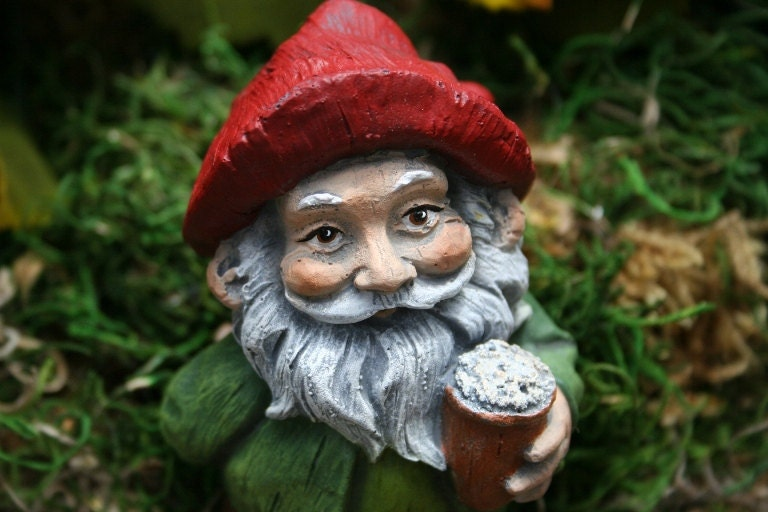 Funny Garden Gnomes: Beer Drinking Gnome Garden Gnomes For Sale Funny Naughty
