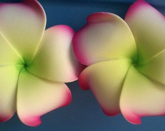 plumeria, hawaiian hair flower, plumeria hair barrette, plumeria, flower clip, hair clip,hawaii, hair flower