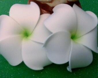 plumeria, hawaiian flower, plumeria barrette, plumeria, flower clip,hawaii, hair flower, green, white