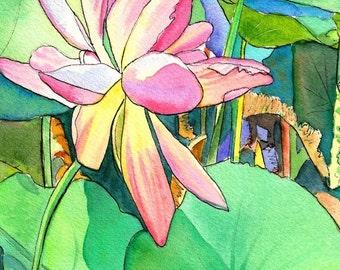 Lotus Flowers art prints, pink lotus art, tropical plant art, zen decor, lotus paintings, Hawaii decor, Kauai art, lotus flower wall art