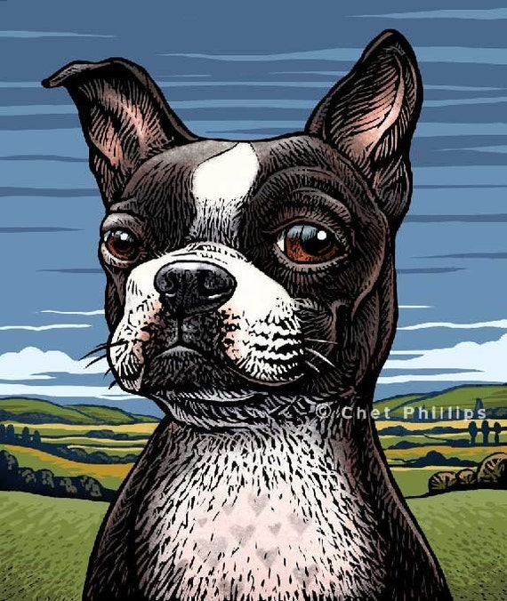"Boston Terrier- 8"" x 10""- Dog Art Print- Dog Wall Decor- Dog Wall Art- Dog Print- Dog Gift"