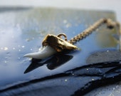 RESERVED for LISA.   MAKO shark tooth necklace on 14k gold fill chain, with gold plated cap. White tooth pendant