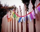 Ribbon Garland - Rainbow