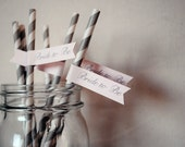 Bride to Be Paper Drink Straw Flags - Set of 12
