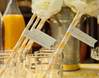 It's Almost Time- Baby Shower Straw Flags- Set of 12