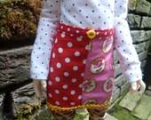 Colourful Skirt for Narsha/ Slim MSD